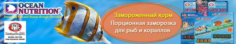 Ocean Nutrition производство кормов для морской и пресноводной тропической рыбы премиум-класса